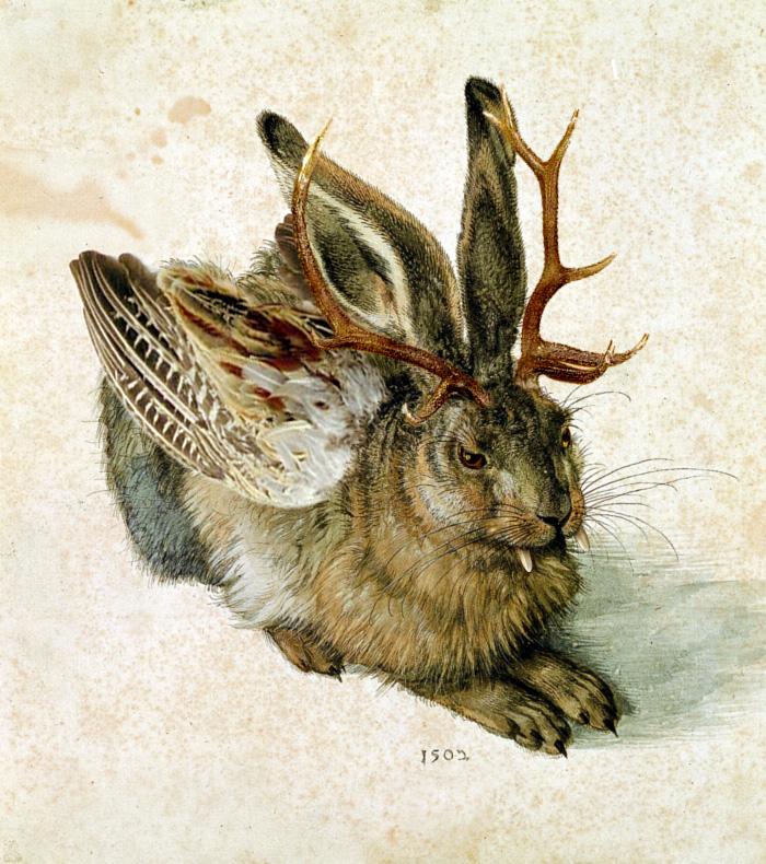 Wolpertinger nach Albrecht Dürer - Bild: Wikipedia