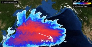 Radioaktiver Pazifik