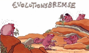 evolutionsbremse